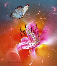 Butterfly Wallpaper, Wallpaper Backgrounds, Roses, Plants, Painting, Art, Love Photos, Photo Galleries, Love