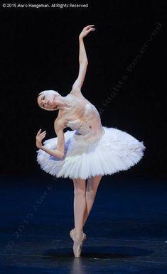 """Russian ballet Swan Lake Svetlana Zakharova """"The Dying Swan"""" Photo © 2015 Marc Haegeman Tutu Ballet, Ballerina Dancing, Ballet Art, Bolshoi Ballet, Ballet Dancers, Ballerinas, Ballet Images, Ballet Pictures, Dance Pictures"""