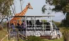 Werribee Open Range Zoo - Victoria, Australia