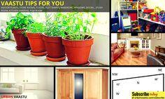 #Vaastu For You : Vaastu #Tips For Placing Indoor Plants