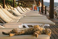 just relaxing!.