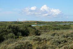 Vogelkijkhut tussen Ballum en Nes, Ameland.