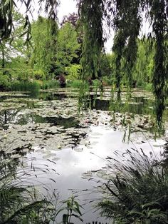 Water Garden at Giverny, France - Monet's home