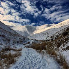 Abidar Mountain in Winter, Kurdistan, Iran.
