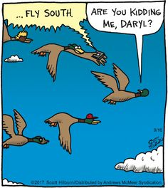 The Arguile Sweater - Duck migration comic. Argyle Sweater Comic, Funny Cartoon Pictures, The Argyle, Cute Alien, Read Comics, Non Sequitur, Calvin And Hobbes, Funny Cartoons, Duck Migration