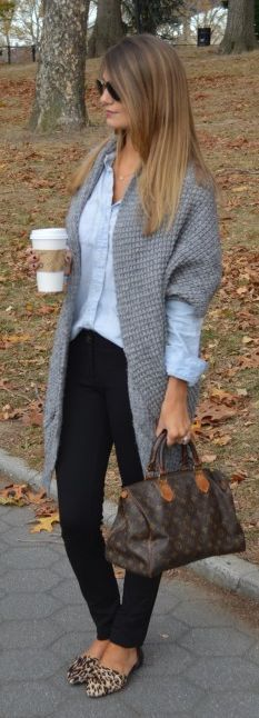 Grey Cardigan, chambray shirt, black skinnies, leopard flats... ( diff bag)