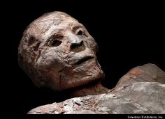 This Egyptian mummy is an adult man who was unwrapped long after his mummification. Analysis of a CT scan data shows that the man was around 45 to 50 years old and around 5 feet, 4 inches tall when he died. The body still has the remains of the gold that was applied to his face and hands during the mummification process. His fingernails are dark red, although it is not yet known if this was caused by disease or was cosmetic.