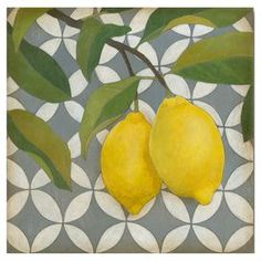 "Print of a lemon tree branch against a geometric background.   Product: Wall art Construction Material: Canvas Dimensions: 16"" H x 16"" W"