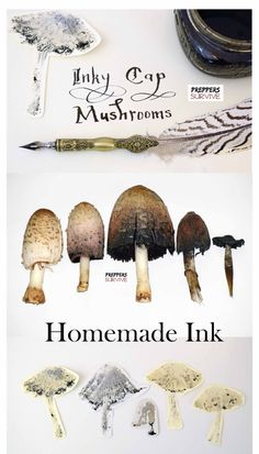Homemade ink is so easy! Learn the Ink Making Process using Shaggy Mane Mushrooms by johanna Survival Prepping, Survival Skills, Survival Gear, Survival Quotes, Emergency Preparedness, Apocalypse Survival, Survival Equipment, Zombie Apocalypse, How To Make Ink