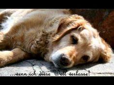 Abschied nehmen - Ein Hund erzählt vom Tod