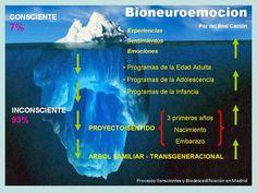 BIONEUROEMOCION. DESÓRDENES AMOROSOS. Por Salomon Sellam. Incluye PDF - CONEXIÓN UNIVERSAL