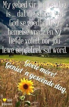 Good Morning Wishes, Good Morning Quotes, Lekker Dag, Evening Greetings, Goeie Nag, Goeie More, Afrikaans Quotes, Morning Pictures, Morning Pics