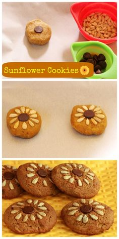 Sunflower Butter Cookies/ Grain free and nut free, with low carb and paleo  versions. Dairy free option too.