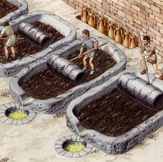 Cómo prensaban los romanos el aceite de oliva.