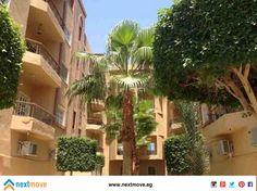 Apartment For sale in Hurghada 70m2 For more details: http://nextmove.eg/listing/property/details/Mohamed-Alex-Apartment-ForSale-Hurghada_4490 شقه للبيع في الغردقه ٧٠م٢ للاستعلام: http://nextmove.eg/listing/property/details/Mohamed-Alex-Apartment-ForSale-Hurghada_4490