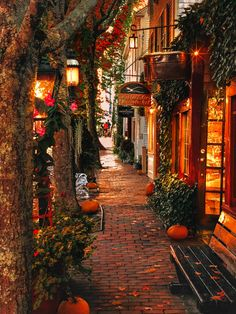 Nantucket is being so seasonal the days became brighter by these vibrant autumn leaves Nantucket Massachusetts. Nantucket is being so seasonal the days became brighter by these vibrant autumn leaves Nantucket Massachusetts. Beautiful World, Beautiful Places, Beautiful Pictures, Wonderful Places, Beautiful Farm, Amazing Photos, Photographie New York, Nantucket Massachusetts, Autumn Cozy