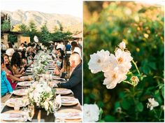 Blush and gold romantic wedding at Serendipity Garden Weddings || Photography by Shelly Anderson Photography || www.shellyandersonphotography.com