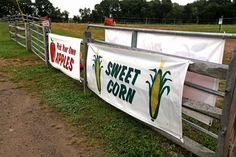 Danvers, MA - September 9: Connors Farm on September 9, 2021 in , Danvers, MA. (Staff Photo By Stuart Cahill/MediaNews Group/Boston Herald) Employee Search, Cambridge School, Farm Store, Headline News, September 9, Simple Reminders, Security Guard, Black Couples, Sweet Corn