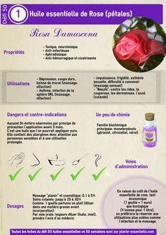 L'huile essentielle de rose, propriétés et utilisation sans danger