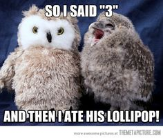 The Tootsie Pop commercial was one of my favorites growing up. What a hoot…ha.