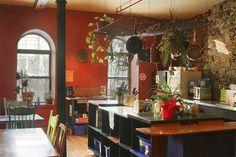 imagina un hostal con las hierbas más usadas en la cocina solo en su jardín