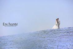 http://enchante2006.com/