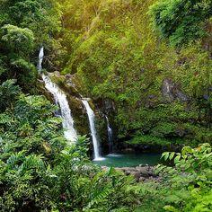 Maui HawaII Waterfall Hike And Chocolate Tour By Vebo hiking photography ideas Maui Hawaii, Hawaii Travel, Hiking Photography, Nature Photography, Photography Ideas, Haleakala Sunrise, Hawaii Waterfalls, Hawaii Adventures, Trip To Maui