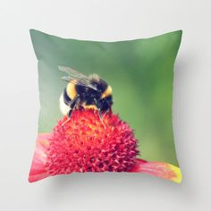 Throw Pillow Cover  Bumblebee on a Red by SYoungPhotography, $25.00