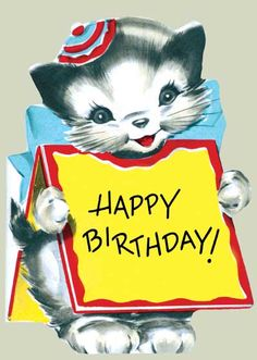 Kitten Wearing Sign - Greeting Card (Bagged with Envelope) | Birthday Greeting Cards