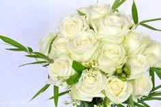 Rose di Luglio