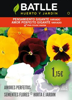 Amores Perfeitos - PLANTAR PORTUGAL