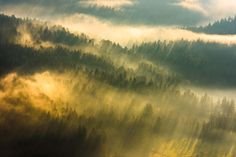 I'm a nature photographer from Slovenia. I'm always on the look-out for in the right place at the right moment scenes.   This is my favorite collection of sun rays and how they define the look and feel of a landscape to those who are willing to see it.