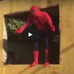 Homem aranha teve que se afastar do trabalho