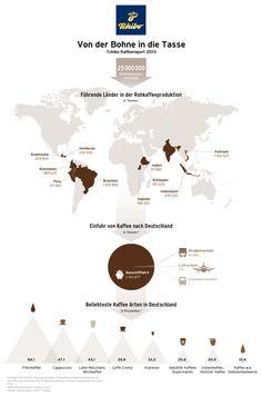 Kaffee Infografik: Von der Bohne in die Tasse