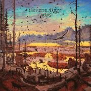 Okkervil River – Away – Rezension des Musikmagazins éclat