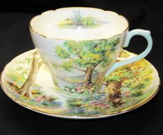Shelley Woodland Scenic Woods Cambridge Tea cup and saucer Teacup