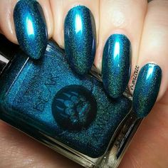 Bear Pawlish - Crossroad Blues