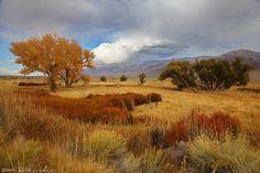 California Autumn - Autumn in the United States Best of Web Shrine