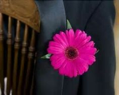 Image Detail for - ... Pink Gerbera Daisy Boutonniere | Buy Hot Pink Gerbera Daisy
