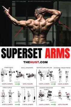 Superset arms workout plan 💪