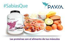 Las proteínas son la fuente de nutrición de los músculos así como de tus órganos internos