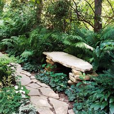 Garden bench for shade garden. Garden Stones, Garden Paths, Boulder Garden, Landscape Design, Garden Design, The Secret Garden, Woodland Garden, Woodland Plants, Garden Cottage