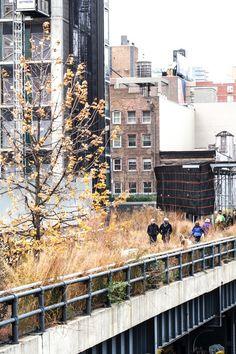 High Line | New York