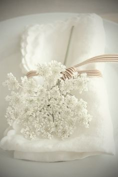 beautiful table setting -- use baby's breath. I'm terribly allergic to the flower in the pic! (idk what type of flower it is. Queen Anne Lace, Deco Floral, Floral Lace, Shades Of White, Deco Table, Decoration Table, White Flowers, Lace Flowers, Fresh Flowers