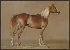 Horse painting by Anna Bazhenova