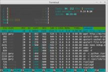 View Processes With htop -