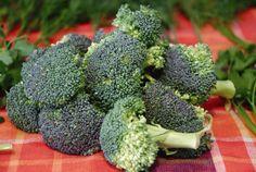 Вкусные блюда из брокколи