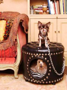 Footstool Doghouse This black faux-leather ottoman is adorned with pewter studs and an ultra-suede zebra cushion to become a special home within a home. (Product and Photo by Precious Palaces)