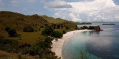 #PantaiPink #PulauKomodo Pantai Pink atau Pink Beach di Pulau Komodo, Nusa Tenggara Timur (NTT), kini menjadi primadona baru bagi wisatawan mancanegara (wisman) karena memiliki keistimewaan yang khas dan langka di dunia. Saya suka pantai ini, warna pasirnya unik dan saya masih bisa melihat karang-karang beraneka warna, kata seorang wisatawan dari Singapura, Koh Poh Chai saat berlibur di Pink Beach , kawasan Taman Nasional Komodo, Rabu (28/10/2015