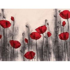 Red Poppies Canvas Art - Hans Andkjaer (18 x 24)